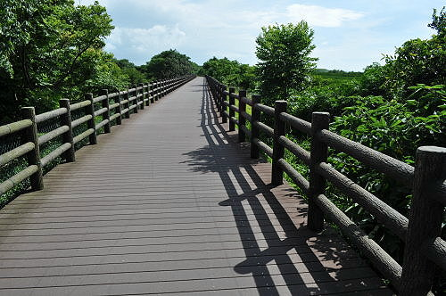 結合溼地生態的新竹17公里海岸線